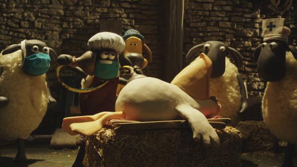 Bitzer und Shaun bringen den Pelikan in die Scheune, um ihn zu pflegen.   | Rechte: © KiKA