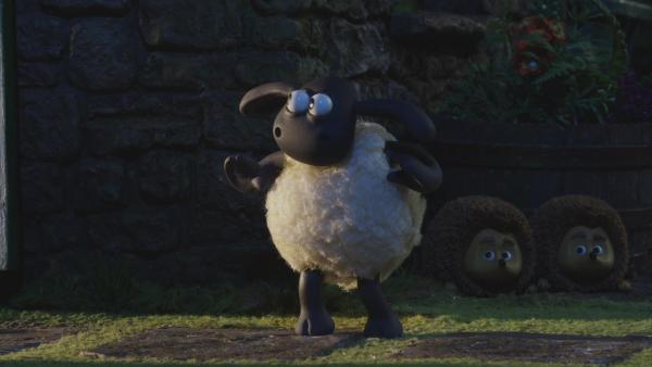 Timmy soll endlich schlafen, doch das kleine Schaf will lieber den Igeln helfen.    Rechte: © KiKA