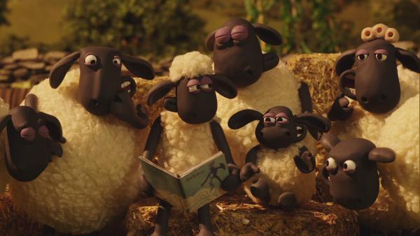 Shaun liest ein Buch über Drachen vor und die Schafe hören gespannt zu.   Rechte: © KiKA
