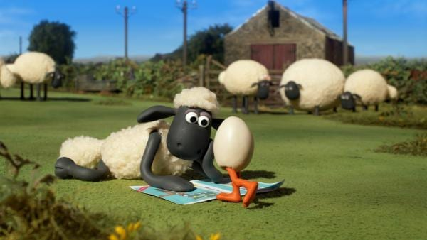 Ein Ei auf zwei Beinen? Die erste Begegnung zwischen Shaun und Gänschen Goz. | Rechte: WDR/BBC/Animation Ltd.