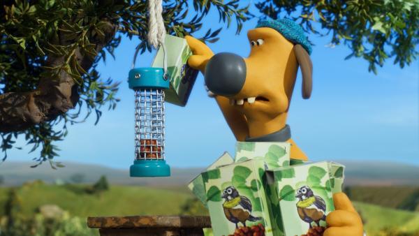 Immer sind die Nüsse weg. So schnell kann Bitzer den Vorrat im Vogelhäuschen gar nicht nachfüllen.   Rechte: WDR/BBC/Animation Ltd