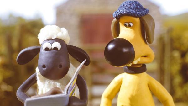 Shaun (li.) und sein Freund Bitzer (re.) leben auf der Weide eines idyllisch gelegenen Bauernhofes.   Rechte: WDR/Aardman Animations Ltd.