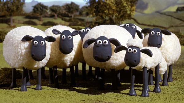 Shaun (vorn, re.) und seine Freunde leben auf der Weide eines idyllisch gelegenen Bauernhofes. Der Frieden auf der Weide ist hinüber! Der neue Bienenstock geht mit seinem Gesumme allen Schafen gehörig auf die Nerven. | Rechte: WDR/Aardman Animations Ltd.