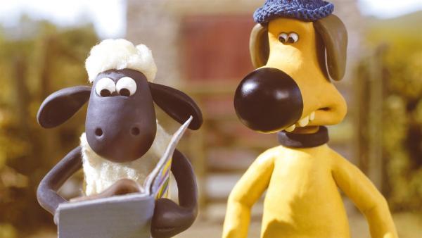 Kann Shaun (li.) seinem Freund Blitzer (re.) weiterhelfen - Blitzer ist verliebt! | Rechte: WDR/Aardman Animations Ltd.