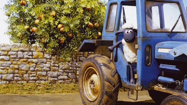 """Shaun verfügt über einen ausgesprochenen """"Schaf-Sinn"""" und findet auch für die vertracktesten Situationen eine Lösung - auch für den kaputten Traktor?!   Rechte: WDR/Aardman Animations Ltd."""