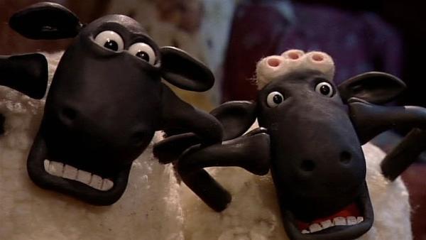 Was ist passiert? Den Schafen steht der Schrecken ins Gesicht geschrieben. | Rechte: WDR/Aardman Animation Ltd./BBC