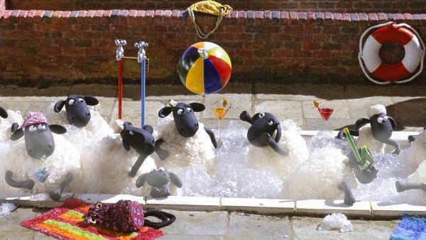 Mit einem ausgeklügelten Plan verschafft Bitzer dem Bauern eine leere Wanne und den Schafen ein wohltemperiertes Planschvergnügen. | Rechte: WDR/Aardman Animations Ltd.