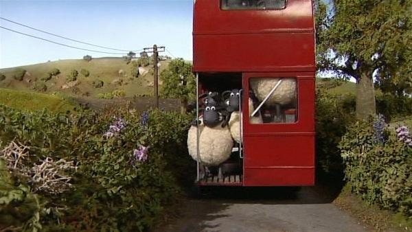 Ein Bus voller Schafe. Aber wohin wollen sie denn? | Rechte: WDR/Aardman Animation Ltd./BBC