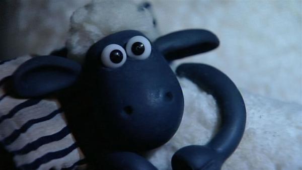 Schreck in der Nacht. Wer macht hier solchen Krach? Shaun kann nicht mehr schlafen.   Rechte: WDR/Aardman Animation Ltd./BBC