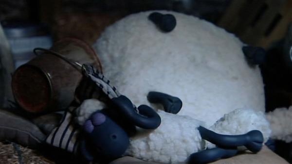 Wenn Shirley schnarcht, wackelt die Scheune und auch abdecken hilft nicht. | Rechte: WDR/Aardman Animation Ltd./BBC