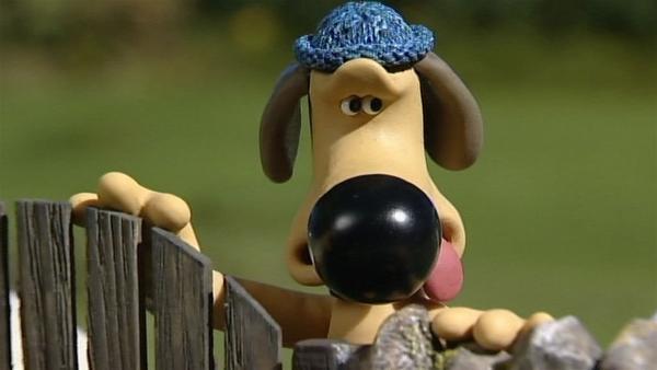 Die Schafe machen, was sie wollen, Bitzer ist geschafft. | Rechte: WDR/Aardman Animation Ltd./BBC