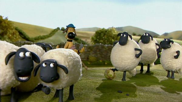 Schafe spielen kein Fußball? Falsch, ein Fußballspiel bringt das Leben auf der Farm gehörig durcheinander.   Rechte: WDR/Aardman Animation Ltd./BBC