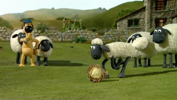 Shaun vor, noch ein Tor!   Rechte: WDR/Aardman Animation Ltd./BBC