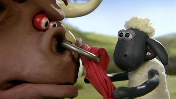 Auge in Auge mit dem großen Stier. Kann Shaun ihn beruhigen? | Rechte: WDR/Aardman Animation Ltd./BBC
