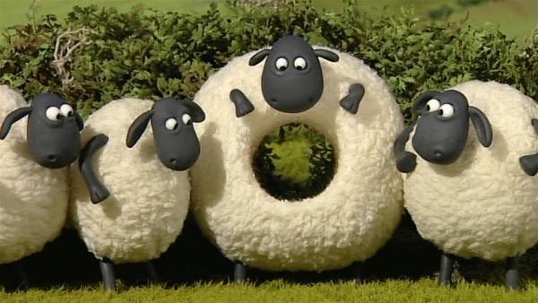 Oh weh! In Shirleys Bauch ist ein großes Loch. Wie ist denn das passiert?   Rechte: WDR/Aardman Animation Ltd./BBC