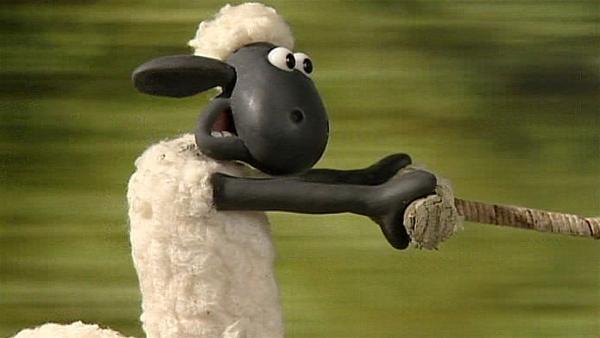 Der neue Farmbewohner hält Shaun ziemlich in Atem. | Rechte: WDR/Aardman Animation Ltd./BBC