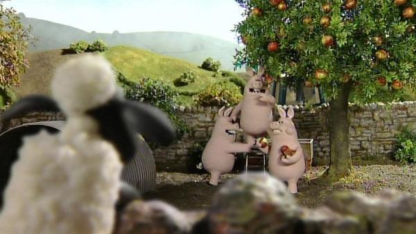 Der Apfelbaum steht bei den Schweinen. Werden sie die reifen, leckeren Früchte teilen? | Rechte: WDR/Aardman Animation Ltd./BBC
