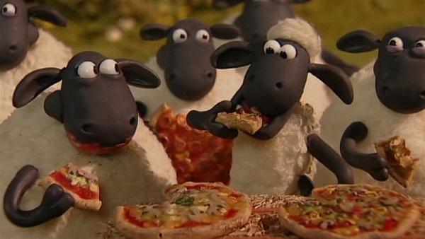 Pizza! Pizza! Ein Festessen auch für Schafe.   Rechte: WDR/Aardman Animation Ltd./BBC