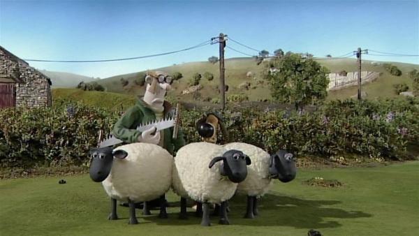 Der Farmer will den schönsten Baum fällen. Wie können die Schafe das verhindern? | Rechte: WDR/Aardman Animation Ltd./BBC