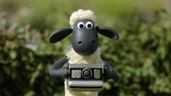 Shaun versucht sich als Fotograf und macht tolle Bilder.   Rechte: WDR/Aardman Animation Ltd./BBC