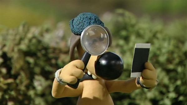 Bitzer sieht sich Shauns Fotos genau an. Sie sind ziemlich gut geworden.   Rechte: WDR/Aardman Animation Ltd./BBC
