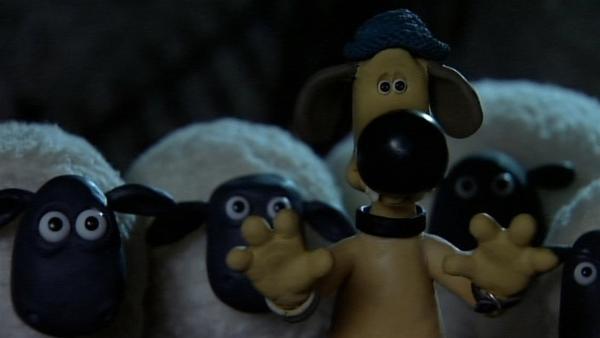 Bitzer stellt sich schützend vor die Schafe, aber auch ihn gruselt es sehr. | Rechte: WDR/Aardman Animation Ltd./BBC