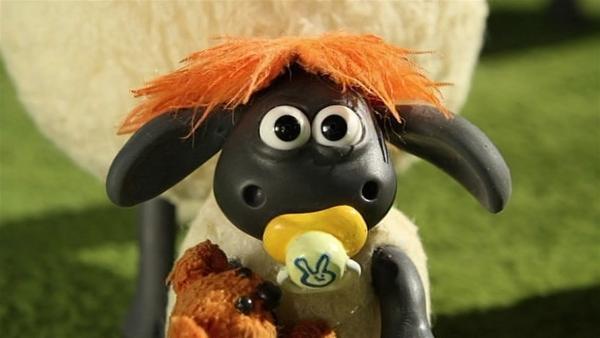 Timmy mit neuer Frisur - auch ihm steht die Perücke des Farmers sehr gut. | Rechte: WDR/Aardman Animation Ltd./BBC