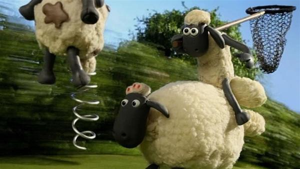 Timmy ist nicht zu stoppen. Kann Shaun ihn mit dem Netz fangen? | Rechte: WDR/Aardman Animation Ltd./BBC