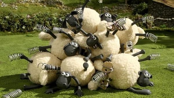 Hüpfen kann nicht jeder, sonst gibt es am Ende: einen Haufen Schafe! | Rechte: WDR/Aardman Animation Ltd./BBC