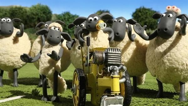 Die Schafe haben eine komische Maschine entdeckt. Die fährt und macht weiße Linien. | Rechte: WDR/Aardman Animation Ltd./BBC