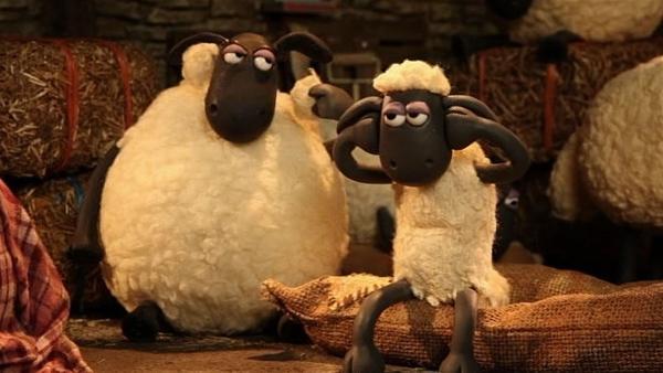 Laute Musik dringt aus dem Farmhaus, das bekommt kein Schaf ein Auge zu. | Rechte: WDR/Aardman Animation Ltd./BBC