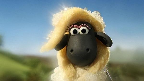 Da muss Shaun zweimal hinsehen. Aus dem Schaumbad steigt ein wunderschönes Schaf.   Rechte: WDR/Aardman Animation Ltd./BBC