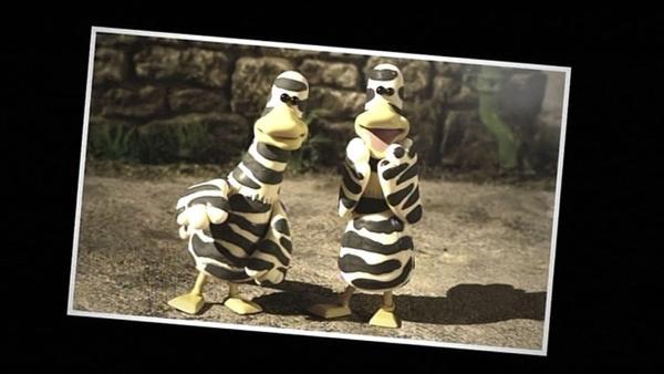Wer sind diese seltsamen Vögel? Ein Schnappschuss soll es klären. | Rechte: WDR/Aardman Animation Ltd./BBC