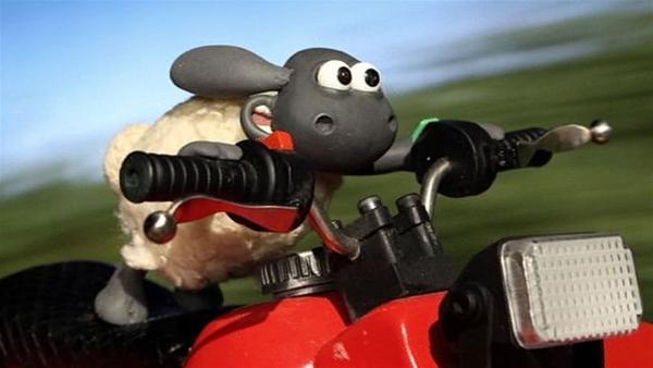 Timmy hat es ganz schön eilig. Hoffentlich geht das gut.   Rechte: WDR/Aardman Animation Ltd./BBC