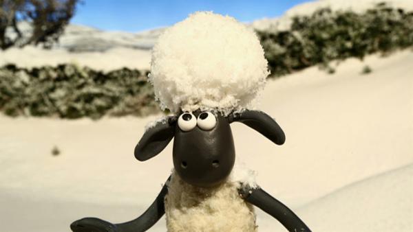 Neuschnee überrascht die Bewohner der Farm. Manch einer muss sich erst einmal an die weiße Pracht gewöhnen. | Rechte: WDR/Aardman Animation Ltd./BBC