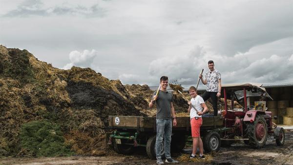 Franz, Benni und Yusuf am Arbeiten auf dem Land bei Wolzburg. | Rechte: ZDF/Felix Kost
