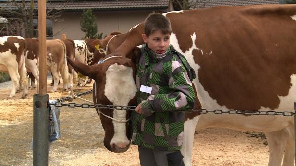 Fabian und seine Lieblingskuh Isabelle auf der Tierschau. Sie soll die Misswahl gewinnen. | Rechte: ZDF/Ilona Stämpfli