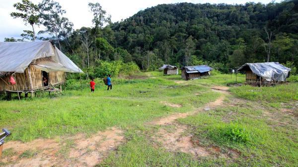 Das kleine Dorf der Orang Ursli, der Waldmenschen, liegt mitten im Dschungel. Wegen der Plantagen für Gemüse und Palmöl mussten sie schon einmal umziehen. | Rechte: ZDF/Katja Engelhardt