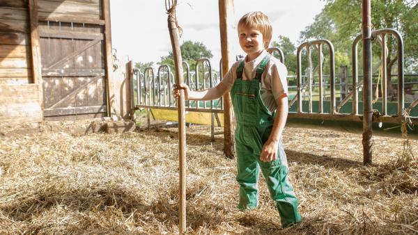 Justus versorgt auf Gut Giffelsberg gerne die Kühe, Gänse und Hühner. | Rechte: ZDF /Ingo Hattendorf