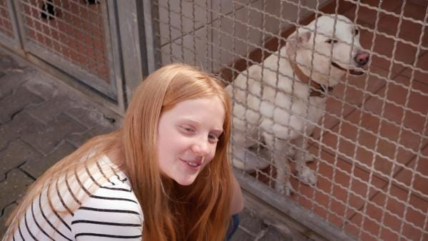 Paula trifft das erste Mal auf Tara. Wird sie der richtige Hund für sie sein?   Rechte: ZDF/Florian Lippke