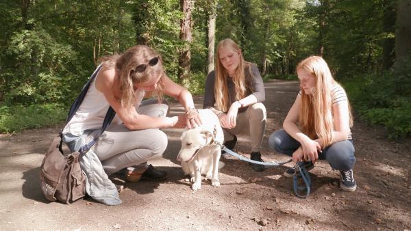 Paula, ihre Schwester und ihre Mutter freuen sich über den gelungenen Probespaziergang mit Tara.   Rechte: ZDF/Florian Lippke