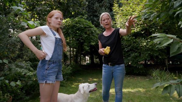 Das Training mit Tara und er Hundetrainerin macht Paula viel Spaß.   Rechte: ZDF/Florian Lippke