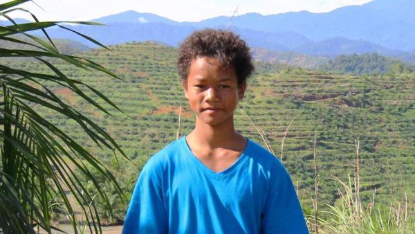 Akee vor den Palmölplantagen | Rechte: ZDF