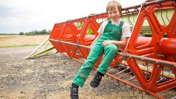 Justus - Immer Action auf dem Bauernhof   Rechte: ZDF