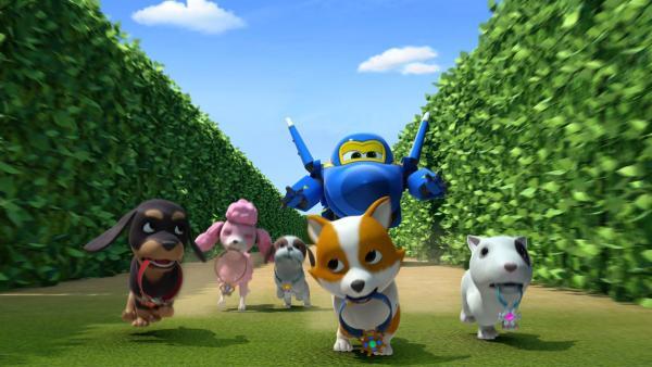 Jerome hat die Hundebabys im Labyrinth gefunden. | Rechte: KiKA/FunnyFlux/QianQi/EBS/CJ E&M