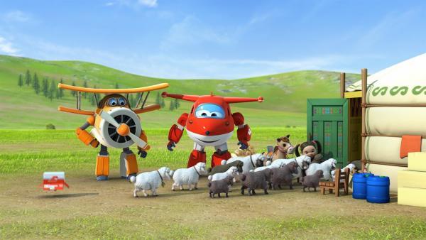 Onkel Albert, Jett und Nambayar treiben die Schafe in die Jurte.   Rechte: KiKA/FunnyFlux/QianQi/EBS/CJ E&M