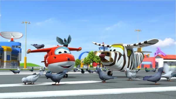 Jett und Bello füttern die Tauben auf dem Flughafen. | Rechte: KiKA/FunnyFlux/QianQi/EBS/CJ E&M