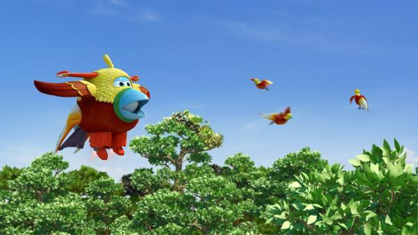 Jett ist als Paradiesvogel verkleidet, um ein gutes Foto zu bekommen.   Rechte: KiKA/FunnyFlux/QianQi/EBS/CJ E&M