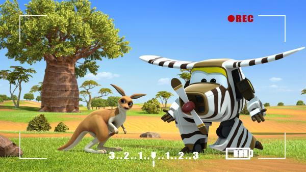 Bello redet mit dem Känguru. | Rechte: KiKA/FunnyFlux/QianQi/EBS/CJ E&M