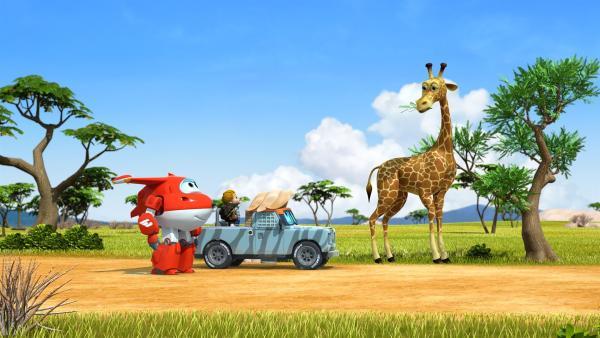 Jett und die Kinder gehen auf die Suche nach dem verschwundenen Spielzeug. | Rechte: KiKA/FunnyFlux/QianQi/EBS/CJ E&M